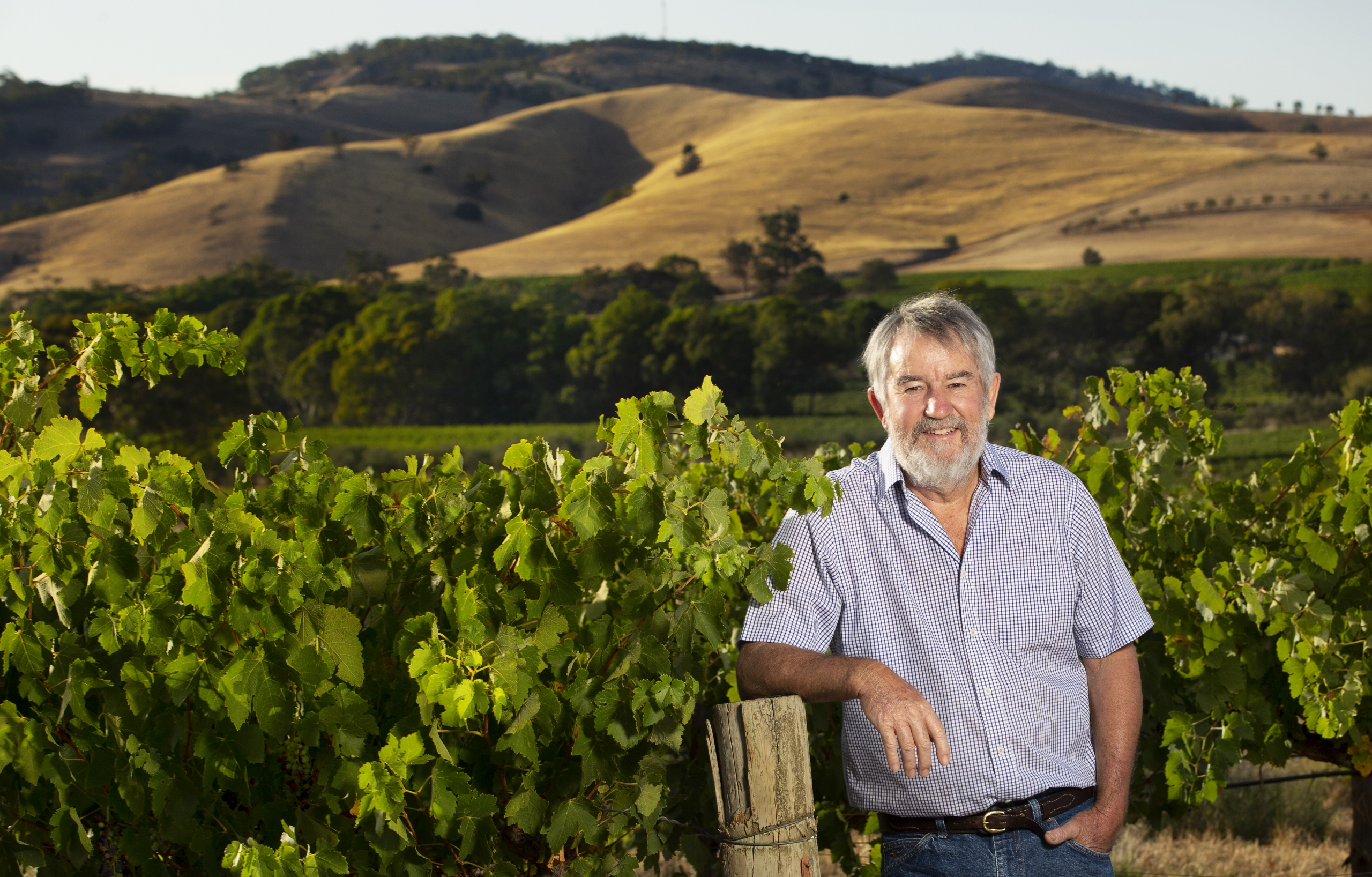 Mike McCarthy in his Barossa Vineyard