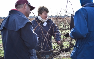 Discussing the plan SA Pruning Expo