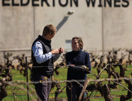 5 minutes with Brock Harrison, winemaker